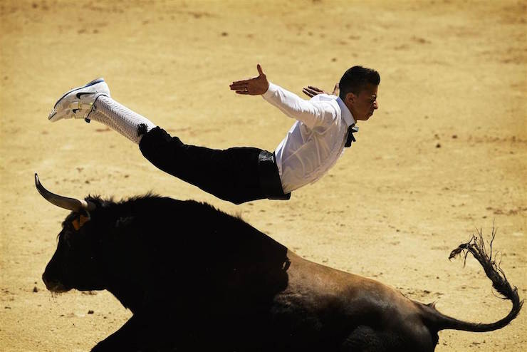 Spanish recortador leaping over a bull