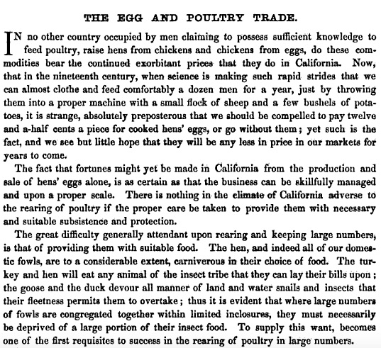 Poultry farming in California in 1859