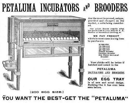 Petaluma Incubator