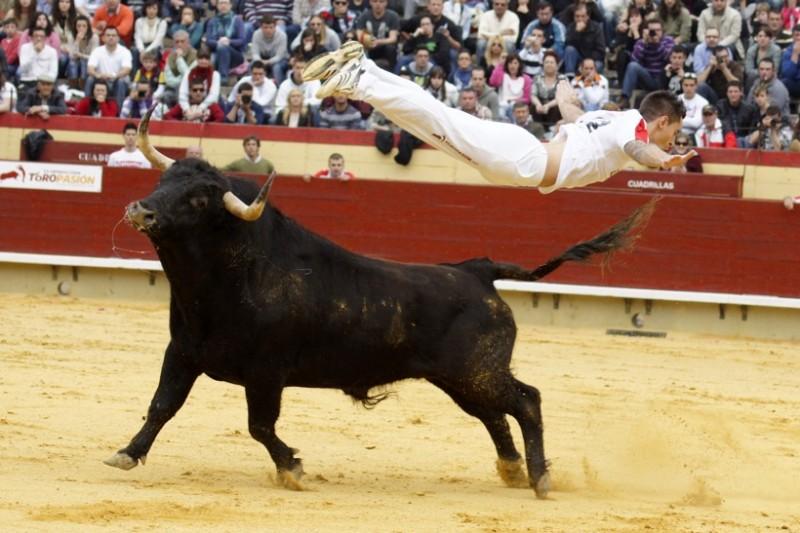 bull-leaping.jpg