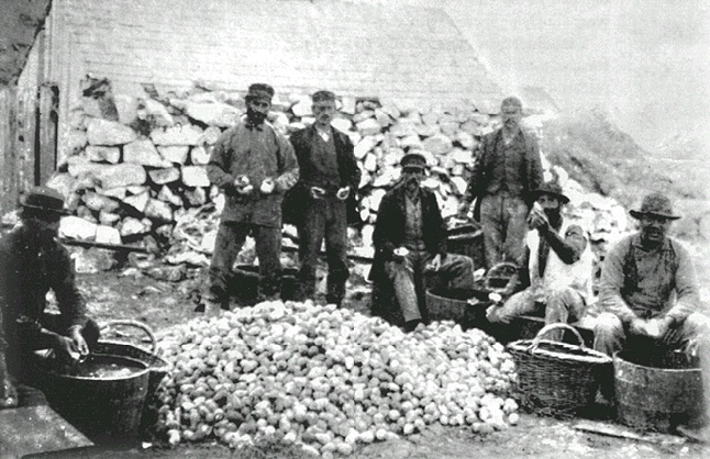 Egg collectors on the Farallones Islands